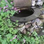 Brunnen oder was