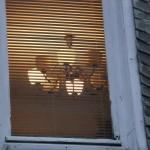 KaFF-Saal Küchenfenster